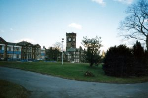 denton clifton image 1990s sm.jpg