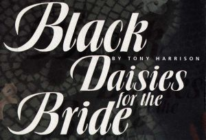black daisies for the bride 30june1993 part 1 sm.jpg