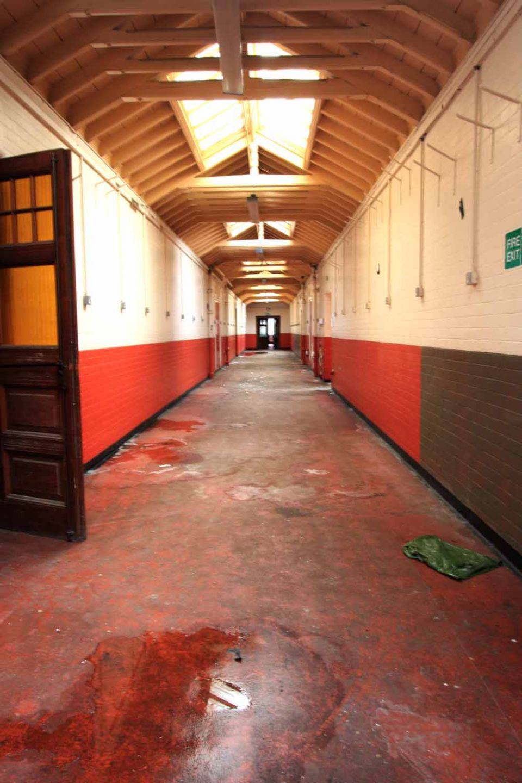 redcorridorsm.jpg