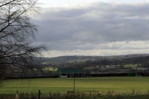 Asylum Cricket Ground