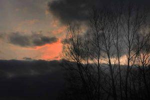 Asylum Sky