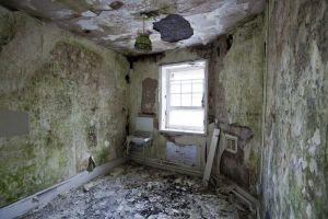 Talgarth Decay